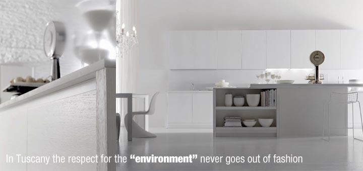 Ambiente_alison-eco-con-particolare-inglese